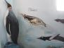 02 - Ushuaia - 02-10-2012 - 06-10-2012