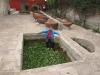 2012sa16-arequipa-5409