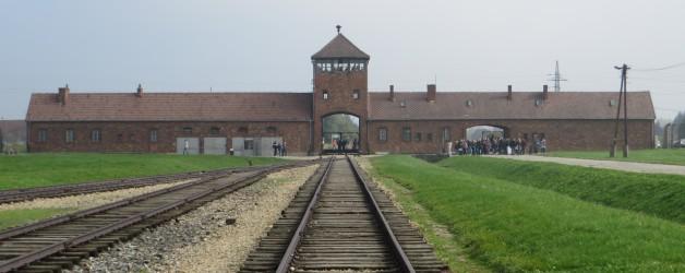 Polen: Heftig Auschwitz en mooi Krakau