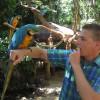 Lima deel 2 en Iguazu deel 2